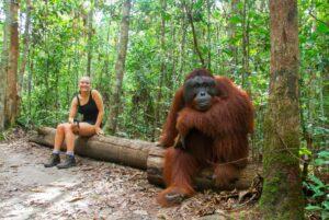 orangutan-IMG_7197